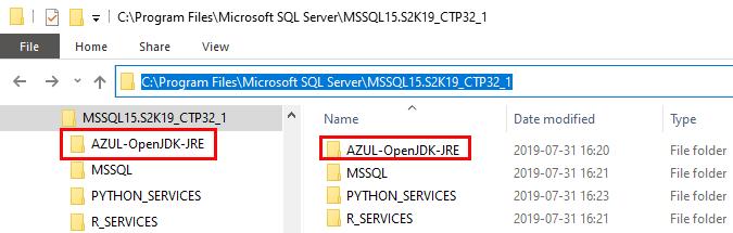SQL Server 2019 CTP3 2 & Java • Niels Berglund